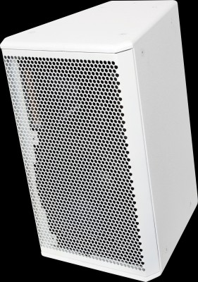 white core 12 2-way speaker