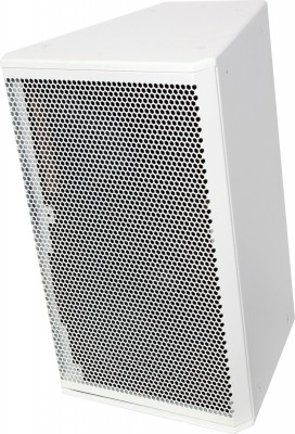 white 2-way speaker