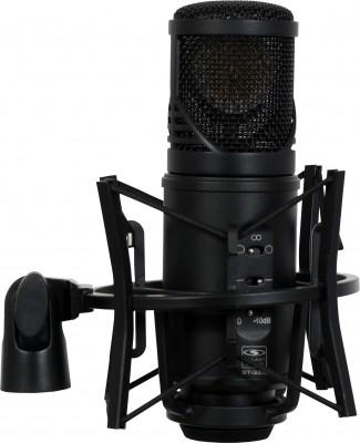 classical recording condenser mic