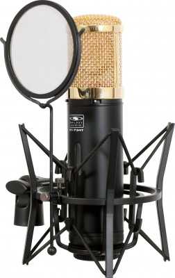 large diaphragm tube condenser mic